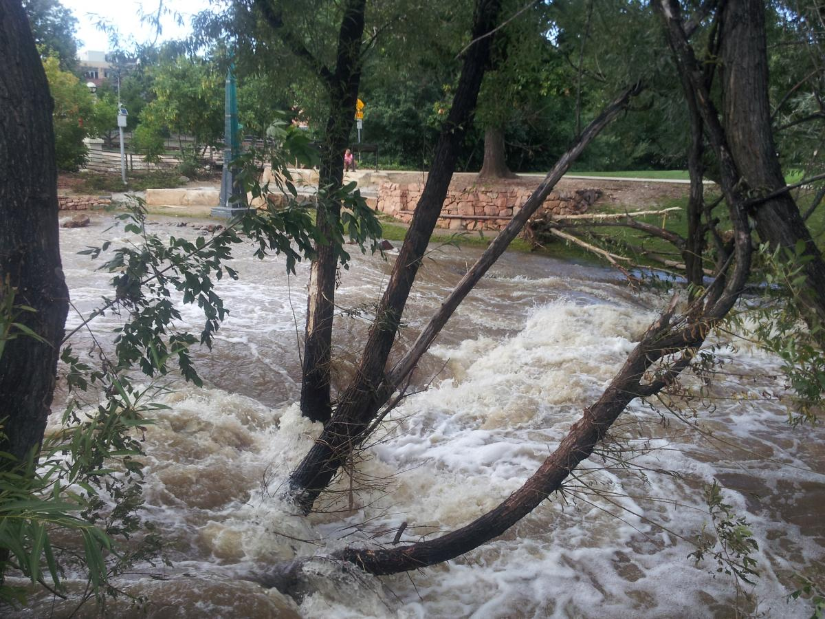 Boulder Creek 5 days post flood