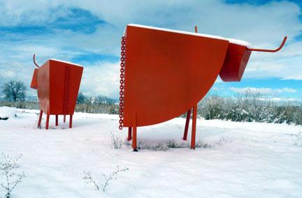 Toros in the snow